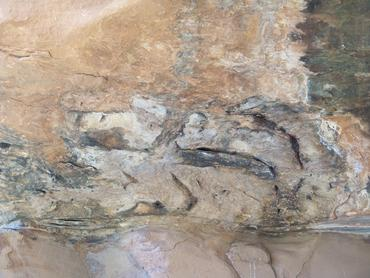 Shaman's face in Pictographs, AZ